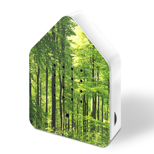 zwitscherbox-uv-forest-side